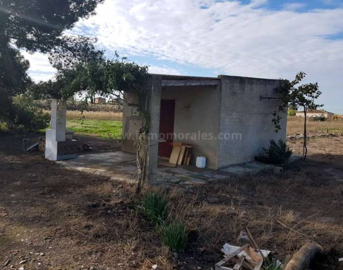 Land - Resale - Catral - Catral